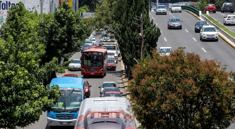 Pierde transporte mexiquense 60% de su ingreso por Covid-19